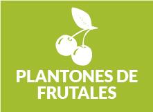 frutales-03